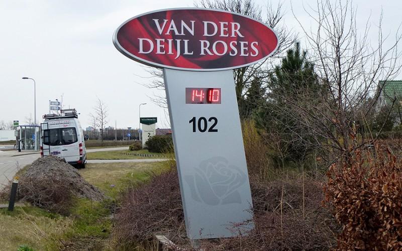 Van der Deijl Roses